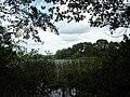 Roßbauersee 06-07-2010 013.jpg