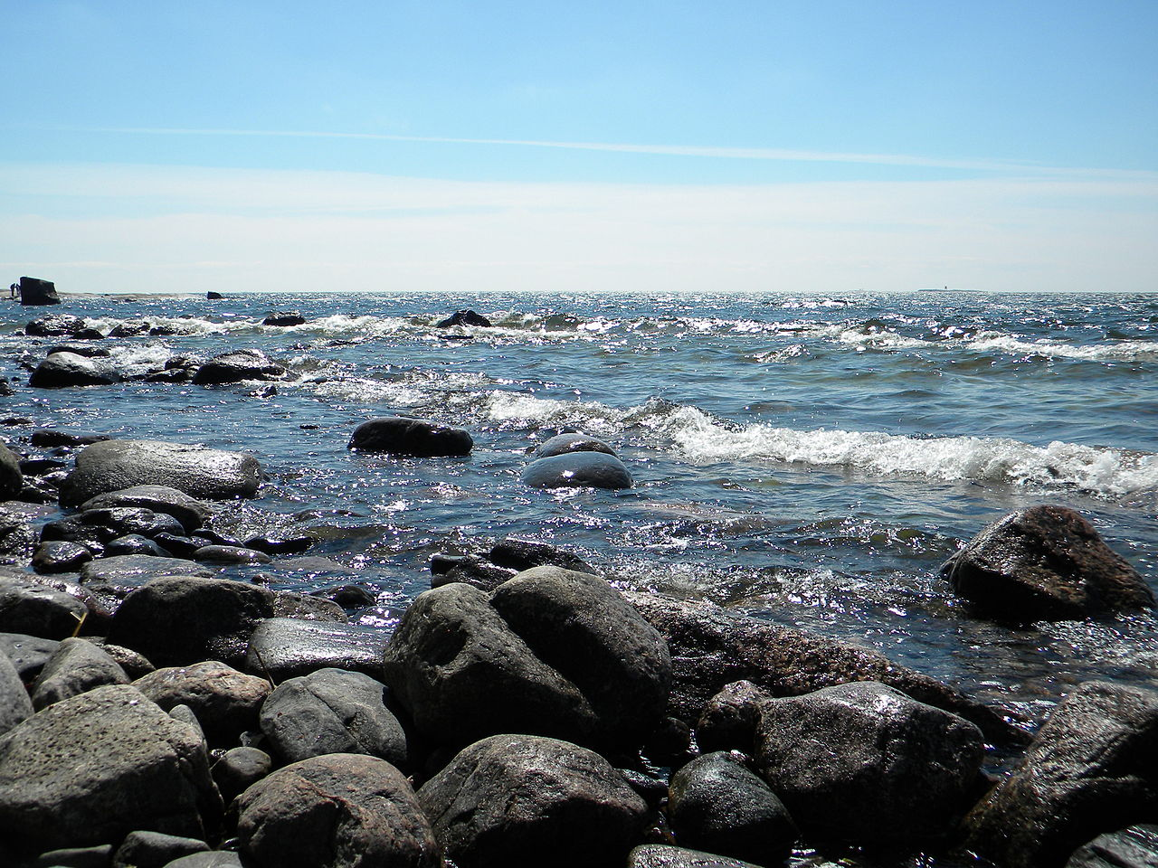 2 04 rocky shores The rocky shore is the border between the sea and land it is a rough environment to live in but a number of animals and plants have made it their home.