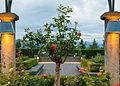 Rose Garden UBC 04.JPG