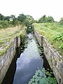 Rossnaree Lock - geograph.org.uk - 509995.jpg