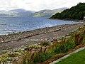 Rubha Cuil-cheanna and Loch Linnhe - geograph.org.uk - 228260.jpg