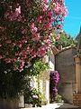 Rue à Gassin village.jpg