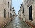 Rue Vivant Gardin (Beaune).jpg