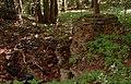Ruiny zamku Apenburg 2016-08-24 p.jpg