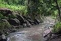 Ruisseau dans une forêt d'Aklankpa.jpg