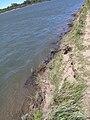 S-SK-River-Erosion.JPG