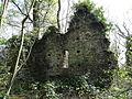 Saint-Pierre-de-Sémilly (50) ruines du château féodal.JPG