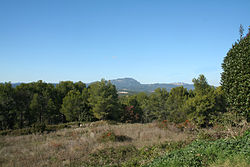 Saint-Vincent-de-Barbeyrargues Saint-Loup.JPG