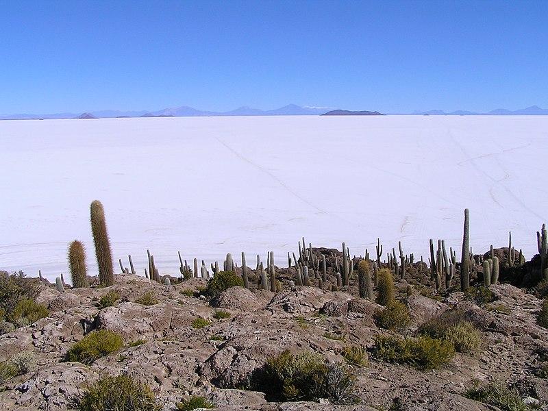 File:Salar de Uyuni - panoramio (5).jpg