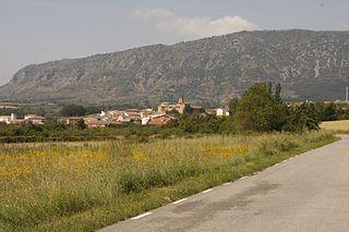Salas de Bureba Municipality and town in Castile and León, Spain