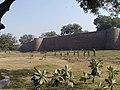 Salimgarh Fort.JPG