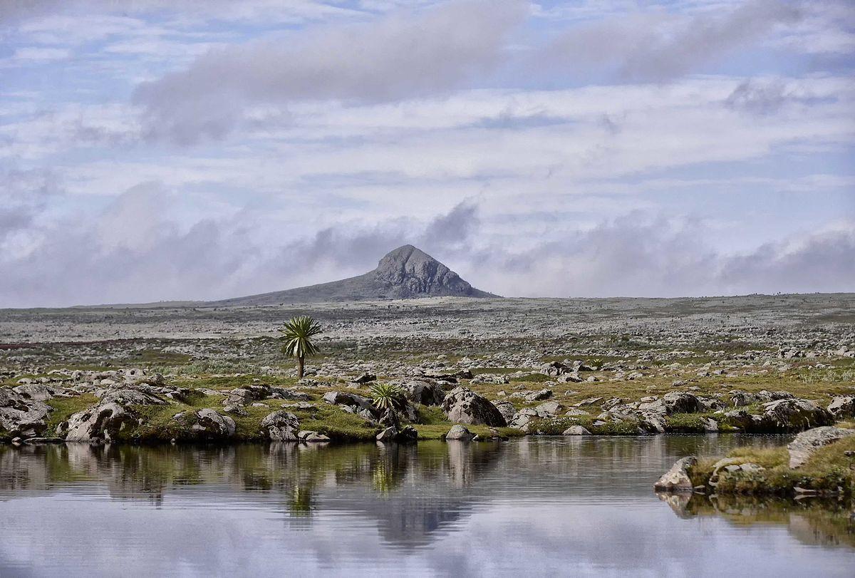 Oromia Region Natural Resources