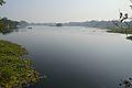 Santragachi Lake - Howrah 2013-01-25 3582.JPG