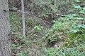 Sarkanās armijas ierakumi pie Gobdziņu kapsētas, Skrundas pagasts, Skrundas novads, Latvia - panoramio (2).jpg