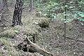 Sarkanās armijas ierakumi pie Gobdziņu kapsētas, Skrundas pagasts, Skrundas novads, Latvia - panoramio (4).jpg