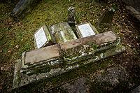 Sarre-Union monument mémoire de la Shoah profanation cimetière juif 17 février 2015.jpg