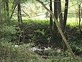 Sauerbach bei Fronrot am Hang, dahinter Klärteiche im Tal.jpg