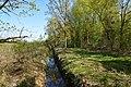 Schleswig-Holstein, Fockbek, Naturschutzgebiet Fockbeker Moor NIK 1661.jpg