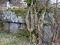 Schloss Hirschling (Grundmauerreste des Wohnturms)-1.jpg