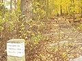 Schwanenwerder - Havelhoehenweg (Havel High Way) - geo.hlipp.de - 30272.jpg