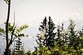 Schweiz Reise Sommer 2013 Ansichten 05.jpg