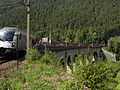 Semmering - Semmeringbahn - Adlitzgrabenviadukt mit sog längster Fahne Österreichs.jpg