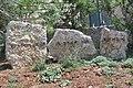 Shomronim, Shechem, Har Beracha, Shomron, Palestine 01.jpg