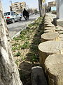 Sidewalk,Wooden pavement,Flowers 04.JPG