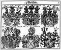Siebmacher 1701-1705 F001.jpg