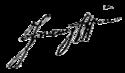 Francis II / I's signature