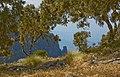 Simien Mountains Landscape, Ethiopia (2466094405).jpg