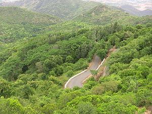 Sirumalai - Road view from Sirumalai View Point