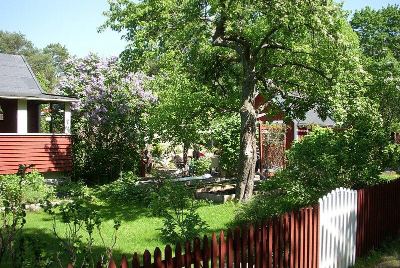 Skanskvarns koloniträdgårdsförening 2011b.jpg