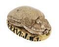 Skarabé av ljusgrå späcksten med guldfattning, Egyptisk forntid - Hallwylska museet - 110254.tif
