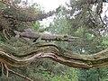 Skulpturenpark am Klausner, Kloster, ama fec (2).jpg