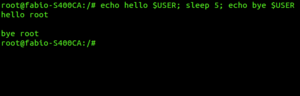 Sleep (Unix) - Sleep Command