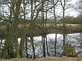 Small Pond on a stream near Broxham Manor - geograph.org.uk - 1755450.jpg