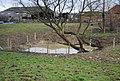 Small pond, Little Dunk's Farm - geograph.org.uk - 1742694.jpg