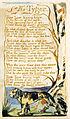 Songs of Innocence and of Experience, copy C, 1789, 1794 (Library of Congress) object 50 The Tyger.jpg