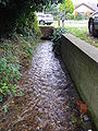 Spring Beck Weybourne 22nd Oct 2007.JPG