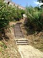 Stairs in Cape Chinen Park 3.jpg