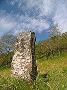 Standing Stone, Tostary - geograph.org.uk - 181783.jpg