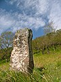 Standing Stone, Tostary - geograph.org.uk - 181783.jpg