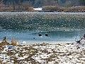 Stauseee Januar 2009 - panoramio.jpg