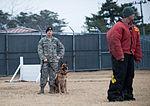 Stella, Bizallion, Guarding the Wolf Pack 140313-F-BS505-127.jpg