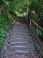 Stezka dolní Sedlec - horní Sedlec, schody.jpg