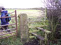 Stile and gate on Sharple's Lane - geograph.org.uk - 1041113.jpg