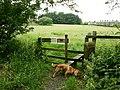 Stile near Stormer Hill - geograph.org.uk - 470061.jpg