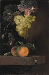 Still Life with Fruit, Lizard and Insects