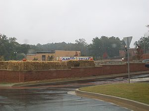 Stockbridge, Georgia - Stockbridge City Hall blocking view of opposing candidates' signs (30 October 2009)